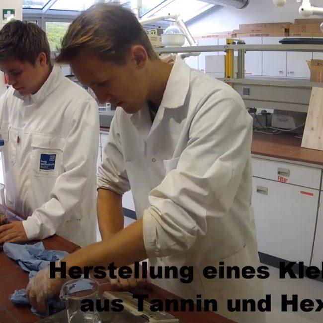 Ottimizzazione di resine tanniche per pannelli truciolari (2013-2014)